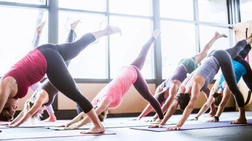 Vinyasa Flow Yoga and Free Circle City Kombucha @ YMCA at the Athenaeum | Indianapolis | Indiana | United States
