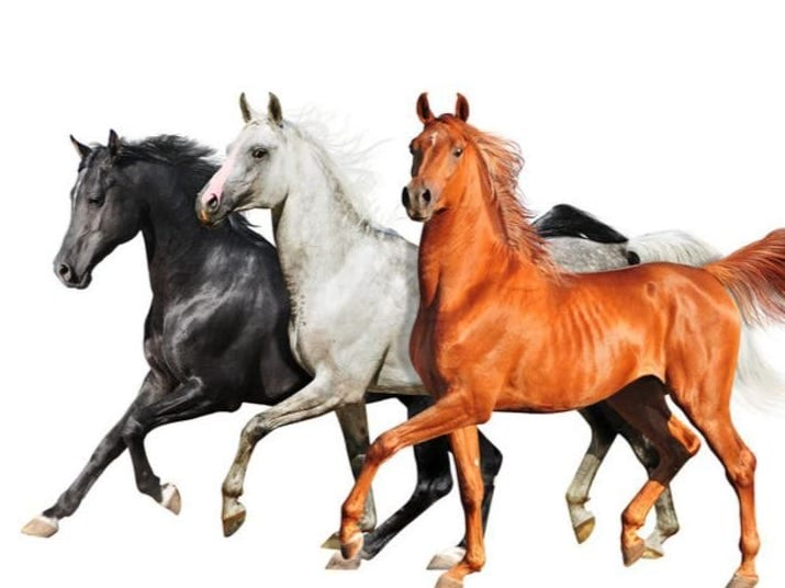 Image result for old town road
