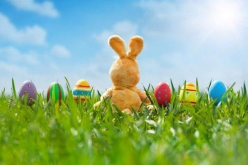 Easter Sunday - Ransburg YMCA will be CLOSED @ Ransburg YMCA | Indianapolis | Indiana | United States